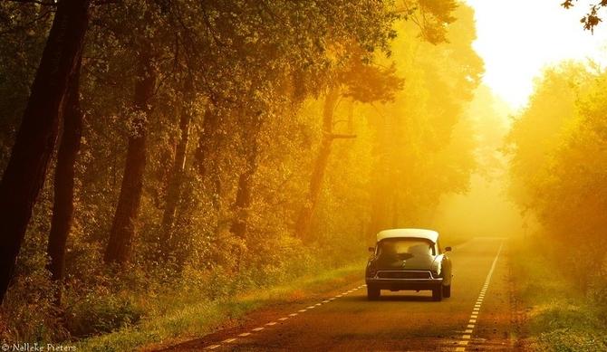 99px_ru_photo_67042_temnij_retro_avtomobil_edet_po_asfaltirovannoj_doroge_vdol