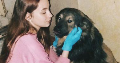 В детстве тащила всех котиков и собачек домой, а с тринадцати лет помогала в приюте. Доброе сердце девочки-подростка
