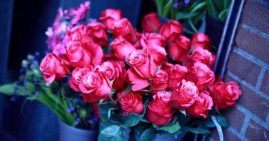 Цветы по поводу и без с адресной доставкой