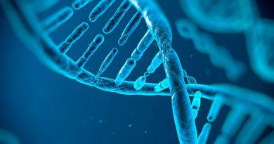 Будущее уже сейчас. Впервые отредактирован геном в организме живого человека