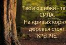 «Ты не знаешь, можешь или нет, пока не попробуешь,» — Агата Кристи