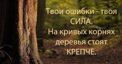 «Ты не знаешь, можешь или нет, пока не попробуешь», Агата Кристи